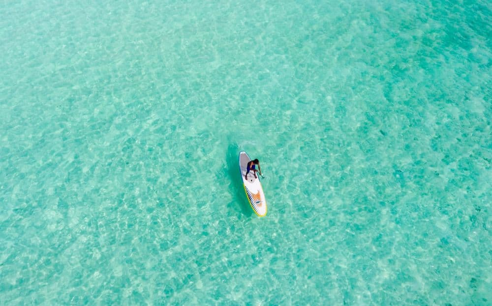 10 Reasons Why Costco Paddleboards Are so Popular