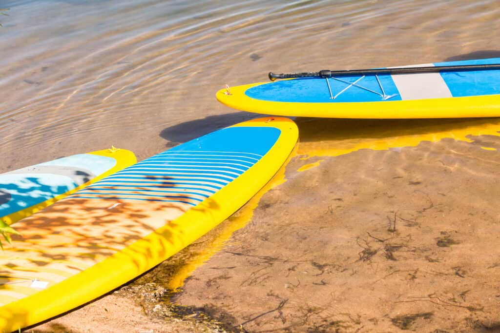 Professional Stand Up Paddleboarder