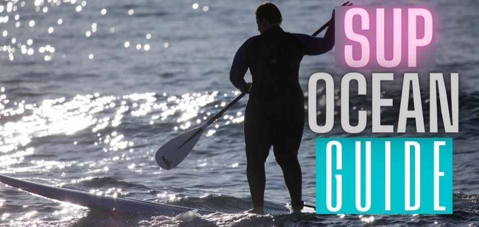 Learn How to Paddle Board in the Ocean